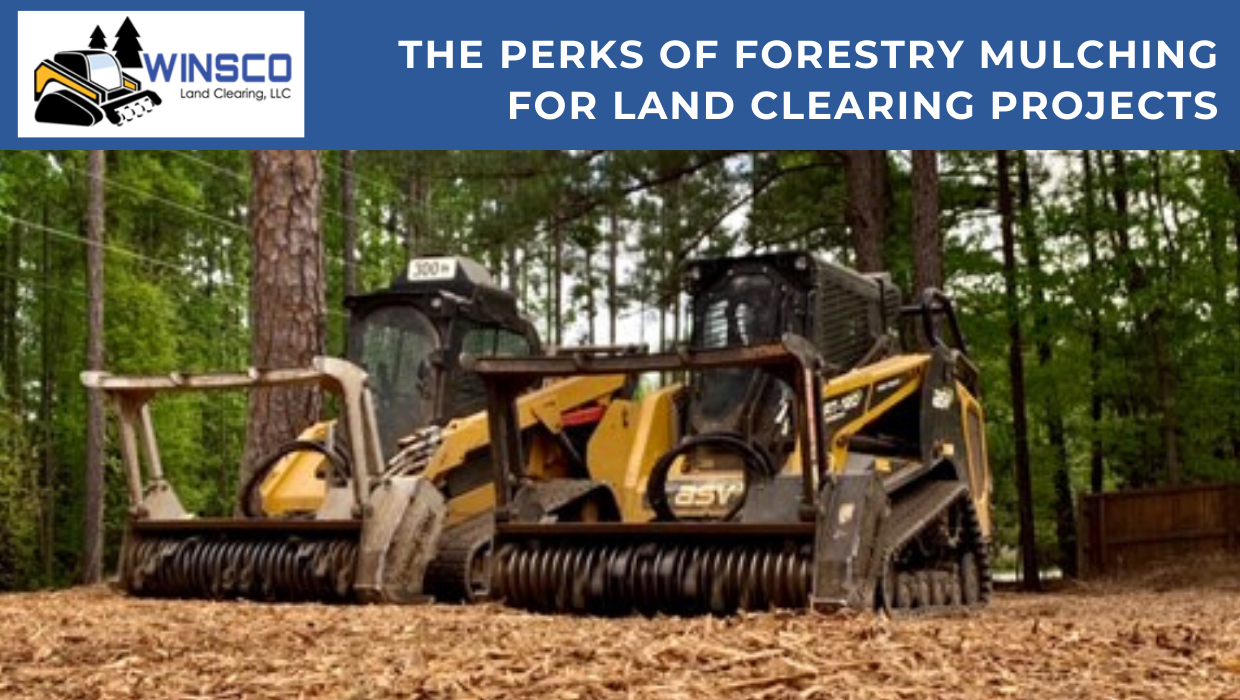 Perks of Forestry Mulching For Land Clearing Projects